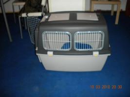Foto 5 Leider müssen wir unsere Hunde verkaufen