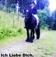 Foto 6 Lieber Irish tinker in black