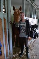 Liebes Reitbeteiligungspferd