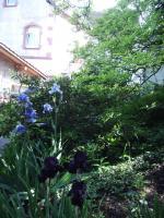 """Foto 17 """"Liebhaberobjekt"""" 105 Jahre altes Jugendstil-Gründerzeit Haus''"""
