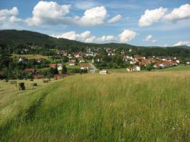 Foto 3 Liebhaberobjekt! Einzigartige Alleinlage im bayrischen Wald  - Teilrenoviertes Bauernhaus - wundervolle Aussichtslage