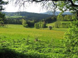 Foto 4 Liebhaberobjekt! Einzigartige Alleinlage im bayrischen Wald  - Teilrenoviertes Bauernhaus - wundervolle Aussichtslage