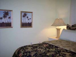 Foto 9 Luxuriöses Ferienhaus mit Pool und Whirlpool in Venice Florida USA