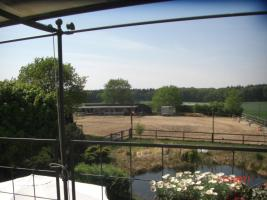 Luxuswohnung oder Haus zur Miete auf Reiterhof oder Reitergut m. 4 Pferden und 3 Hunden