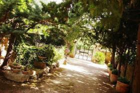 Foto 8 Mallorca Gewerbe Immobilien: Romantische Agrotourismus Finca / Landhotel mit Lizenz in Alaro zur Langzeitmiete ohne Traspaso