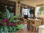 Foto 3 Mallorca Hotel Figuera Park ** Zimmer für 1-4 Personen wahlweise inkl. Frühstück, Halbpension, Vollpension