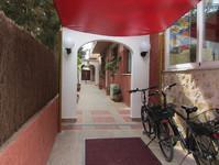 Foto 17 Mallorca Hotel Figuera Park ** Zimmer für 1-4 Personen wahlweise inkl. Frühstück, Halbpension, Vollpension