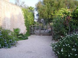 Foto 5 Mallorca Immobilien Langzeitmiete: Romantische renovierte antike Mühle mit kleiner Casita und Meerblick in Ses Salines