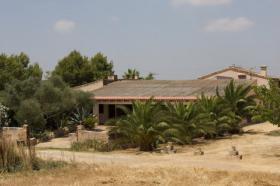 Foto 2 Mallorca: Neuwertige Pool Finca nahe am Es Trenc Strand zur Langzeitvermietung