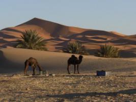 Foto 3 Marokko Rundreise