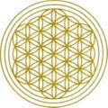 Matrix Energetics u. Matrix Inform, Spirituelle Lebensberatung