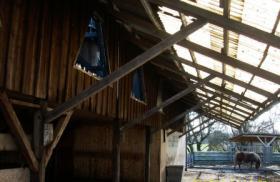 Foto 6 Mehrere Offenstall-Plätze in neuem Stall