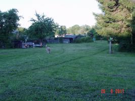 Foto 6 Mehrfamilienhaus oder großzügiges Einfamilienhaus von privat an privat ;-)
