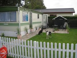Mini Traumhaus/ Mobilheim in Zeeland, Niederlande zu verkaufen für FP 9800,00 Euro