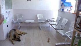 Foto 3 ModerneTierpraxis / Tierklinik auf Formentera (Spanien) abzugeben.