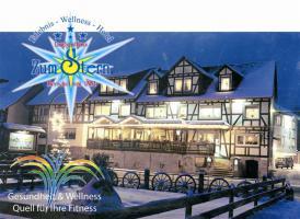 Moderner gut situierter Fam. Betrieb Erlebnis Hotel Zum Stern zu verkaufen