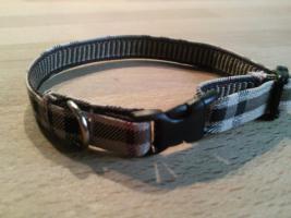 Modische Halsbänder für ihre Hunde