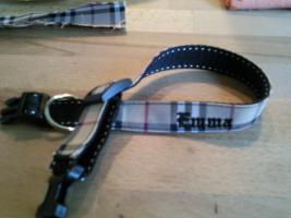 Foto 4 Modische Halsbänder für ihre Hunde