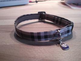 Foto 8 Modische Halsbänder für ihre Hunde