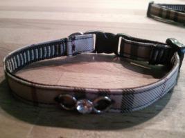 Foto 11 Modische Halsbänder für ihre Hunde
