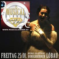 Musicaldinner - Das Original ''Diamonds of Musical''  25.01. Honigbrunnen Löbau