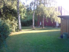 Foto 5 Nachmieter für großzügige und helle 3,5 Raum Wohnung mit großem Garten gesucht