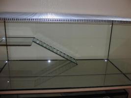 Nagerbecken aus Glas für Hamster/Mäuse