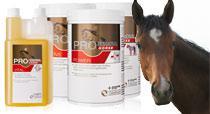 Nahrungsergänzung für Ihr Pferd direkt vom Hersteller
