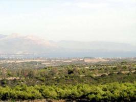 Natur, Gesundheit und Ruhe nahe der Insel Evia/Griechenland