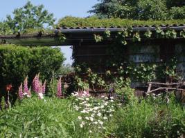Naturnahen Kleingarten