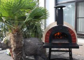 Foto 15 Neu!! Pizzaofen / Steinofen / Holzbackofen Amalfi Red Brick AD70
