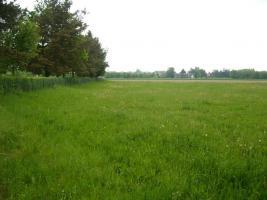 Foto 2 Neuanlage von Kleingarten von privat zur Pacht oder Kauf