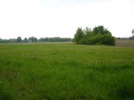 Foto 3 Neuanlage von Kleingarten von privat zur Pacht oder Kauf