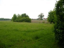 Foto 4 Neuanlage von Kleingarten von privat zur Pacht oder Kauf