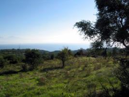 Neubau Einfamilienhaus aus Naturstein in Koroni/Griechenland
