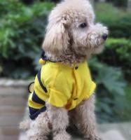 Foto 3 Neuer Pullover für Hunde und Katzen mit Knöpfen Kapuze Ungetragen Biene