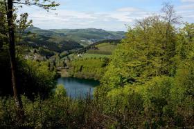 Foto 20 ODER mal in die Eifel-Mosel-Region? 2 Fewo