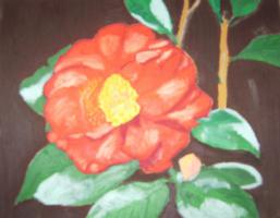Oelgemälde ''Kamelie''  40 x 50 cm