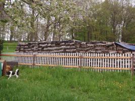Ofenfertiges, Trockenes Brennholz
