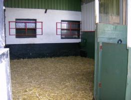 Offenstall f�r 2 Pferde oder 3 Ponys