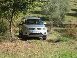 Foto 3 Olivenhain mit 220 Bäumen ital. Adria bei Pescara 13010 qm Grund