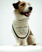 Foto 4 Online Hundeshop mit Hundezubehör und Hundebedarf