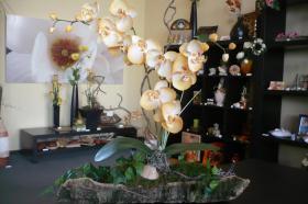 Orchideen-Gesteck