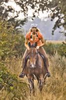 Foto 2 Osterferien / Sommerferien / Urlaub / Kinderferien / Ostern / Reiten / Ponys / Pferde
