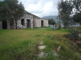 Our offer in the beautiful area of Laconia/Greece