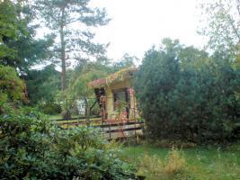 PROVISIONSFREI - Gepflegtes Wochenend- oder Baugrundstück in Strausberg OT Gladowshöhe