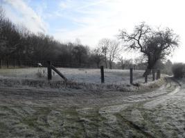 Foto 6 Pacht-Grundstück ca 4800.-qm abzugeben