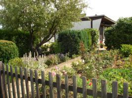 Foto 3 Pachtgarten in Gera-Rubitz, An der Lesse