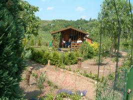 Pachtgarten mit Laube zu vergeben