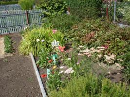 Foto 4 Pachtgarten mit massiver Laube